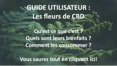 Guide : Fleurs de CBD